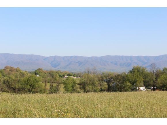 LT 3 Old Stage Road, Greeneville, TN 37745 (MLS #406057) :: Highlands Realty, Inc.