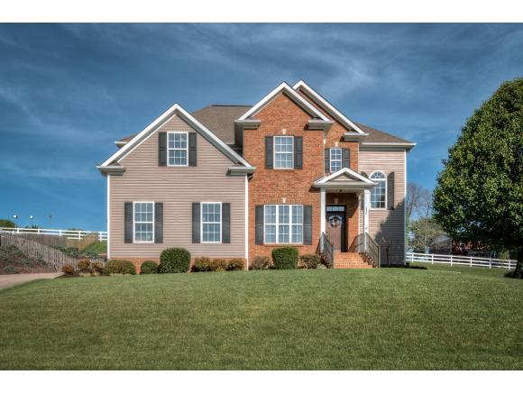 220 Ridgeview Meadows Dr, Gray, TN 37615 (MLS #406114) :: Griffin Home Group