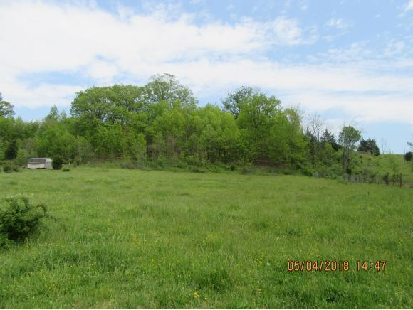 TBD Old Snapps Ferry Rd, Chuckey, TN 37641 (MLS #406242) :: Highlands Realty, Inc.