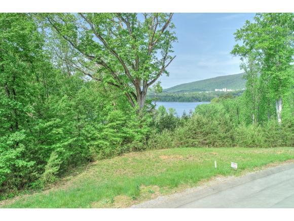 TBD Walnut Bend Drive, Whitesburg, TN 37891 (MLS #406268) :: Highlands Realty, Inc.