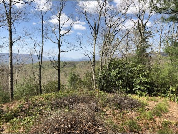 Lot 6 Sprucy Ridge Private Drive, Mountain City, TN 37683 (MLS #406282) :: Highlands Realty, Inc.