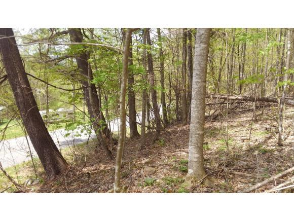TBD Left Higgins Creek, Flag Pond, TN 37657 (MLS #406365) :: Highlands Realty, Inc.