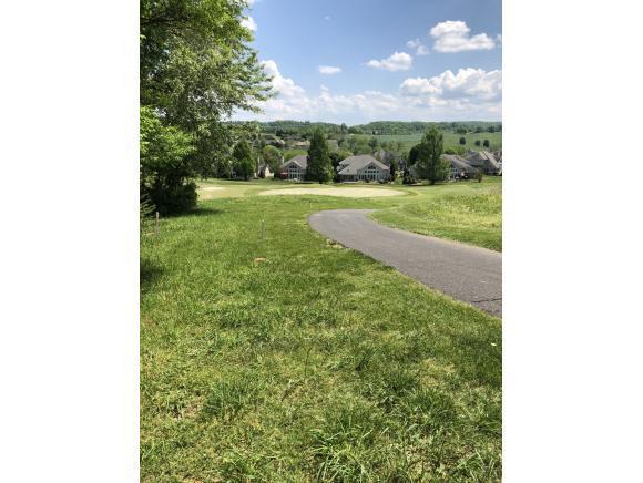 1074 Hawk Nest Court, Jonesborough, TN 37659 (MLS #406507) :: Highlands Realty, Inc.