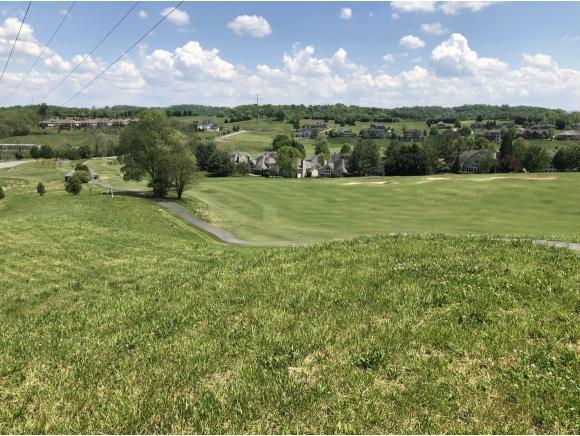 1128 Hawk Nest Court, Jonesborough, TN 37659 (MLS #406510) :: Highlands Realty, Inc.