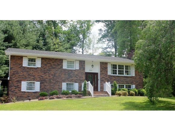 65 Woodstock Lane, Bristol, VA 24201 (MLS #406779) :: Highlands Realty, Inc.