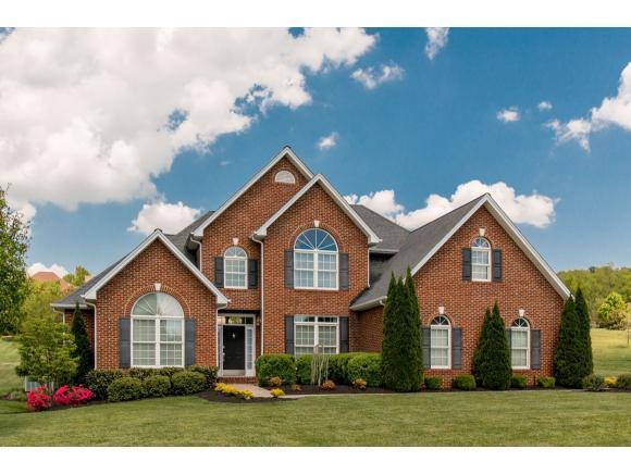 22967 Lone Eagle Drive, Bristol, VA 24202 (MLS #406827) :: Griffin Home Group
