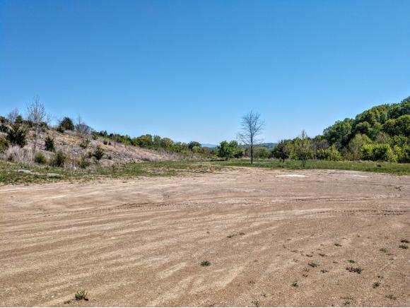 7875 West Andrew Johnson Highway #1, Mosheim, TN 37818 (MLS #406854) :: Griffin Home Group