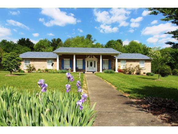 168 Oakview St, Mountain City, TN 37683 (MLS #406872) :: Conservus Real Estate Group