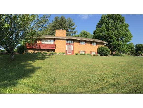 201 Skyview Dr, Greeneville, TN 37745 (MLS #406886) :: Conservus Real Estate Group
