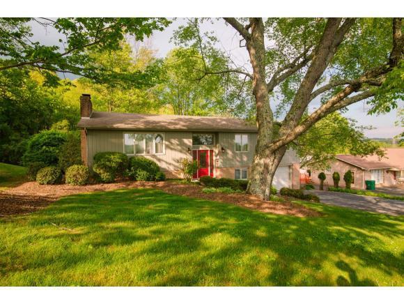 15135 Litton Road, Abingdon, VA 24210 (MLS #406910) :: Conservus Real Estate Group