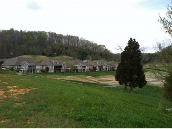 135 Quail Creek Court, Jonesborough, TN 37659 (MLS #407008) :: Highlands Realty, Inc.