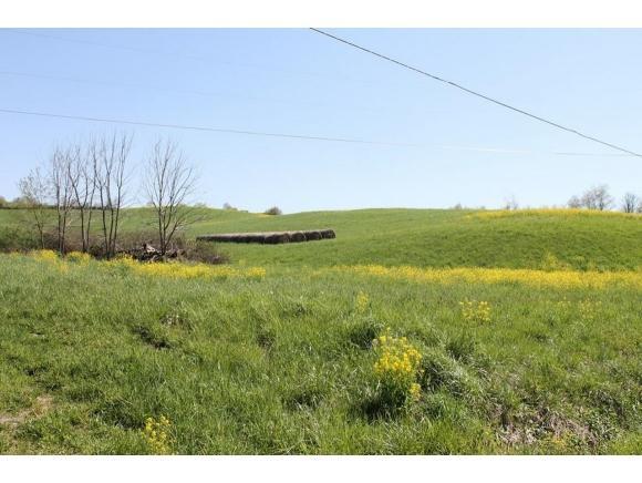 TRACT 2 Repass Road, Abingdon, VA 24210 (MLS #407023) :: Griffin Home Group
