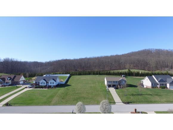 200 Sunnyfield Drive, Blountville, TN 37617 (MLS #407273) :: Highlands Realty, Inc.