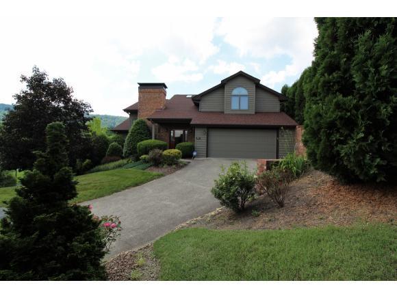 223 Willowbend Ct, Kingsport, TN 37660 (MLS #407417) :: Highlands Realty, Inc.