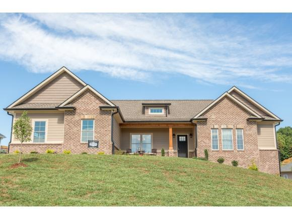 1299 Savin Falls, Johnson City, TN 37615 (MLS #407493) :: Highlands Realty, Inc.
