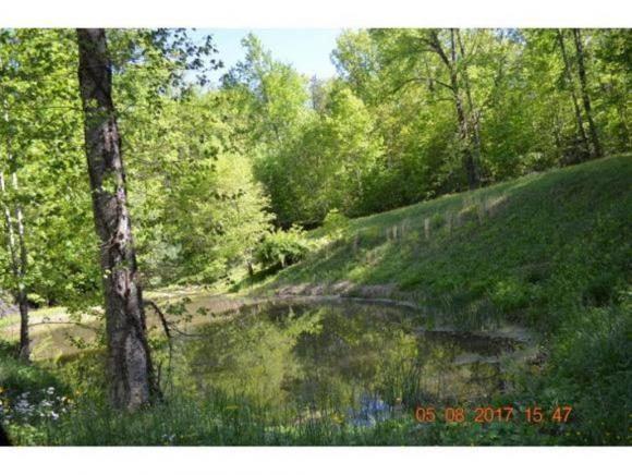 00 Lady Bug, Unicoi, TN 37692 (MLS #407524) :: Highlands Realty, Inc.