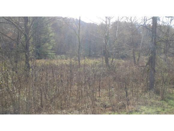 0 Butchers Valley Rd, Rogersville, TN 37857 (MLS #407941) :: Griffin Home Group