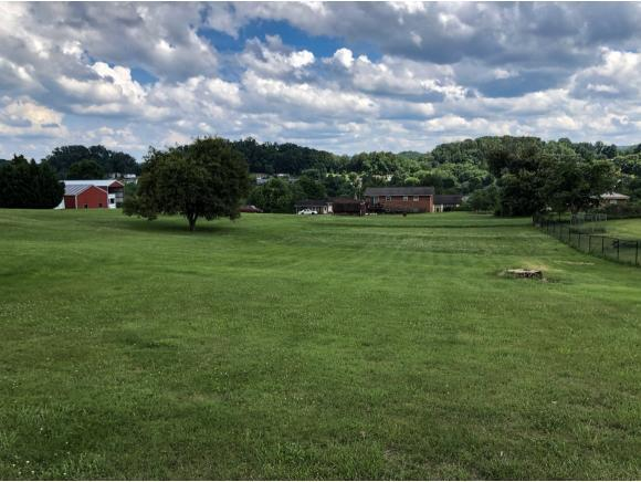 6036 Carters Valley Road, Church Hill, TN 37642 (MLS #408277) :: Griffin Home Group