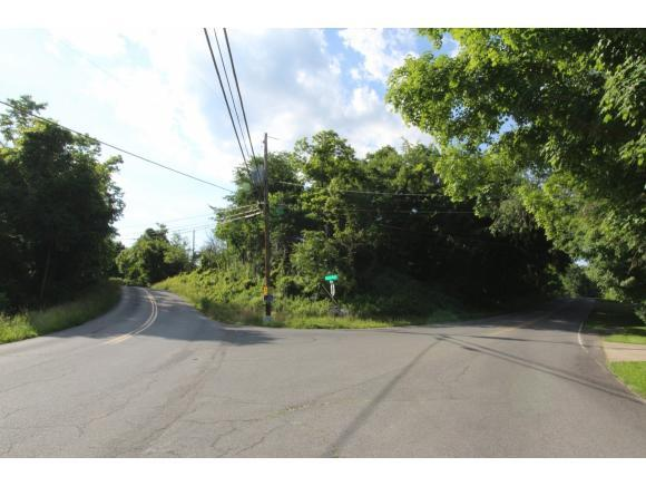 0 Shady View Rd, Kingsport, TN 37664 (MLS #408281) :: Conservus Real Estate Group