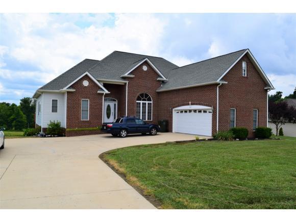 387 Wyndham Drive, Gray, TN 37615 (MLS #408313) :: Conservus Real Estate Group