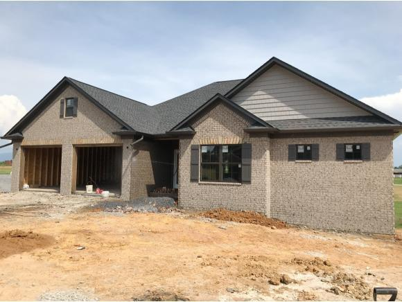 3281 Allison Meadows Boulevard, Piney Flats, TN 37686 (MLS #408328) :: Conservus Real Estate Group