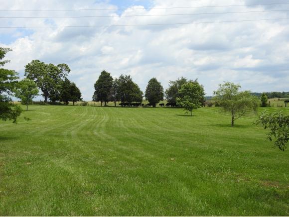 340 Cambridge Grove Way, Jonesborough, TN 37659 (MLS #408348) :: Conservus Real Estate Group