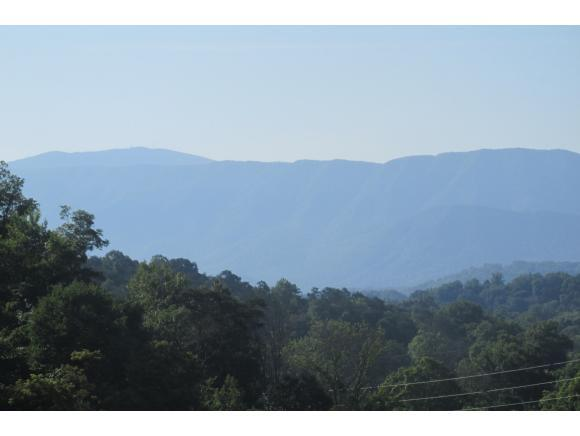 TBD Links View Drive, Greeneville, TN 37743 (MLS #408382) :: Conservus Real Estate Group