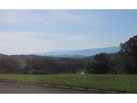 TBD Links View Drive, Greeneville, TN 37743 (MLS #408383) :: Highlands Realty, Inc.
