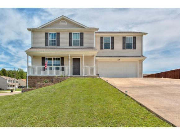 101 May Apple Drive, Bluff City, TN 37618 (MLS #408420) :: Griffin Home Group