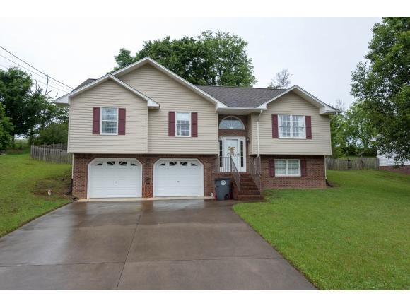 224 Mountain View Drive, Mt. Carmel, TN 37645 (MLS #408457) :: Conservus Real Estate Group