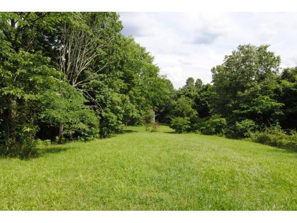 TBD Ridgeway Road, Kingsport, TN 37664 (MLS #408464) :: Griffin Home Group