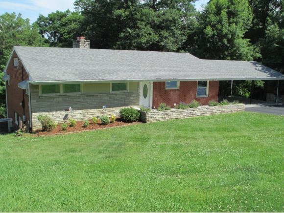 3829 Skyland Drive, Kingsport, TN 37664 (MLS #408513) :: Conservus Real Estate Group