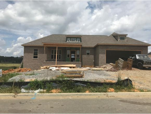 1178 Peaceful Drive, Jonesborough, TN 37659 (MLS #408610) :: Highlands Realty, Inc.