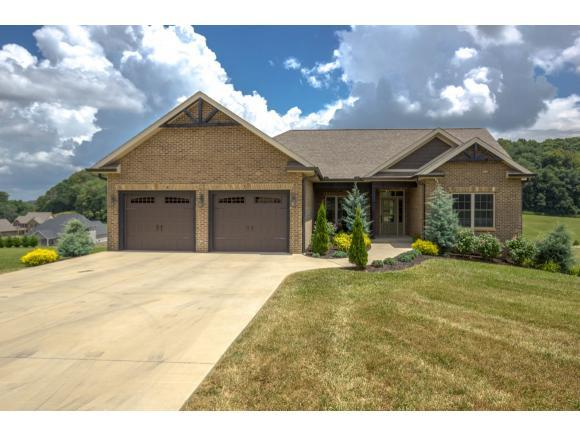 702 Hales Chapel Rd, Gray, TN 37615 (MLS #408627) :: Highlands Realty, Inc.