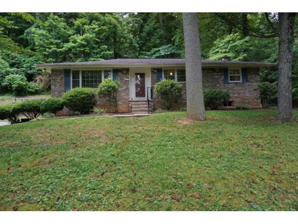 4510 Grace Drive, Kingsport, TN 37664 (MLS #408660) :: Highlands Realty, Inc.