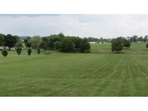 Lot 11 Kyker Rd., Telford, TN 37690 (MLS #408676) :: Highlands Realty, Inc.