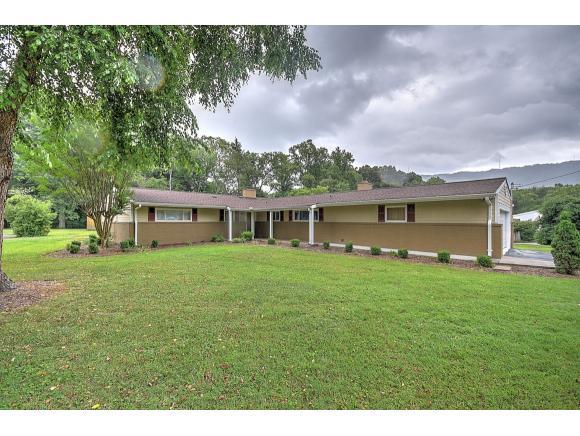 513 Lakewood Rd, Kingsport, TN 37660 (MLS #408710) :: Conservus Real Estate Group
