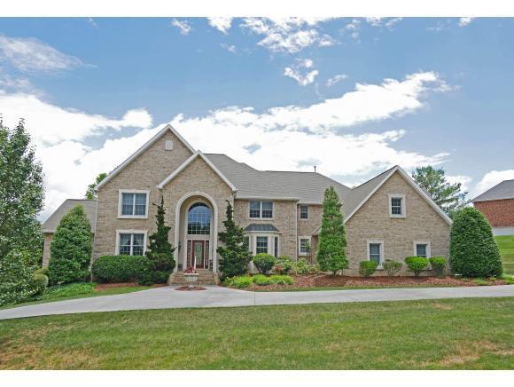 113 Chestnut Ridge Drive, Jonesborough, TN 37659 (MLS #408779) :: Highlands Realty, Inc.