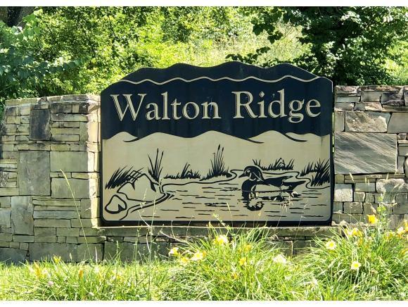 TBA Walton Ridge Road, Bristol, VA 24202 (MLS #408804) :: Highlands Realty, Inc.