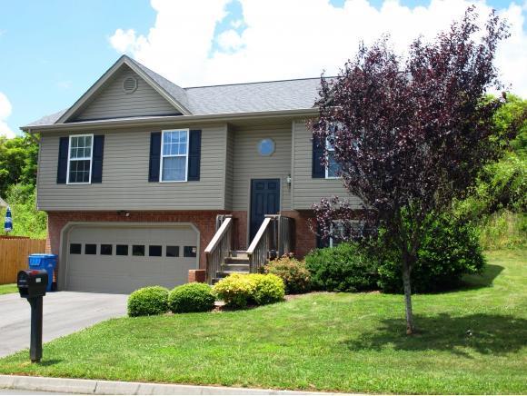 1309 Meadow Creek Lane, Jonesborough, TN 37659 (MLS #408848) :: Conservus Real Estate Group