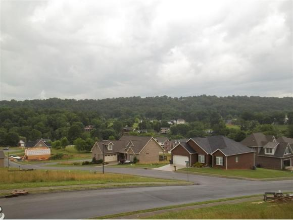 1850 Topsail Court, Kingsport, TN 37664 (MLS #408861) :: Highlands Realty, Inc.