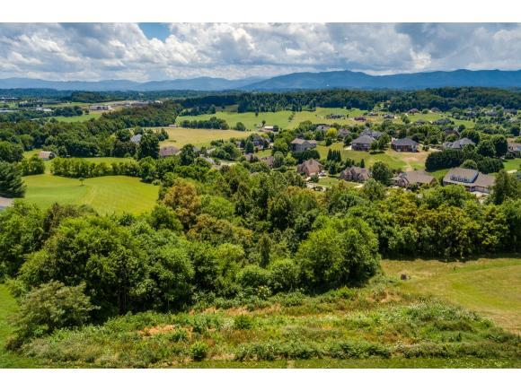 119 Simmons Ridge, Johnson City, TN 37604 (MLS #408903) :: Highlands Realty, Inc.