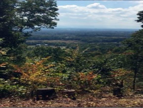 00 Blueberry Ln, Bulls Gap, TN 37711 (MLS #409328) :: Highlands Realty, Inc.