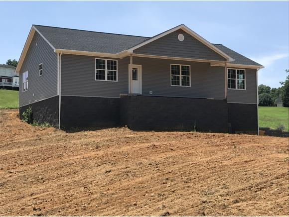 360 East Allens Bridge Road, Greeneville, TN 37743 (MLS #409355) :: Conservus Real Estate Group