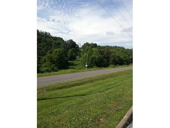 na Mountain View Dr. Na, Piney Flats, TN 37686 (MLS #409427) :: Griffin Home Group