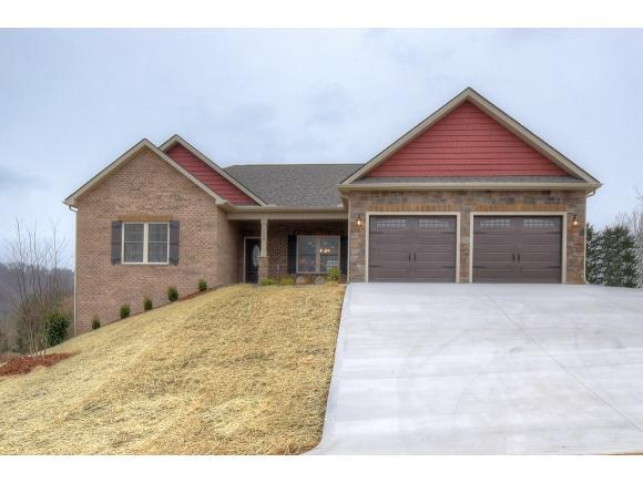 1238 Savin Falls, Gray, TN 37615 (MLS #409601) :: Highlands Realty, Inc.