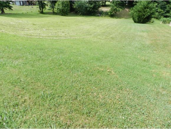 190 Spider Barnes Rd., Jonesborough, TN 37659 (MLS #409692) :: Conservus Real Estate Group