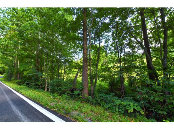 TBD Benhams Road, Bristol, VA 24202 (MLS #409719) :: Highlands Realty, Inc.