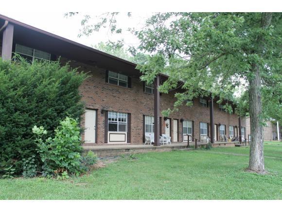 1407 Woodlawn Drive #8, Greeneville, TN 37745 (MLS #409720) :: Conservus Real Estate Group