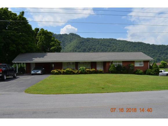 1321 Love Station, Erwin, TN 37650 (MLS #409832) :: Griffin Home Group